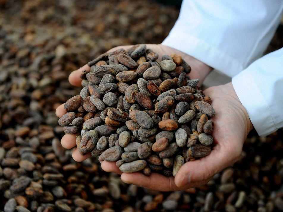 Où trouver le meilleur chocolat au monde ?