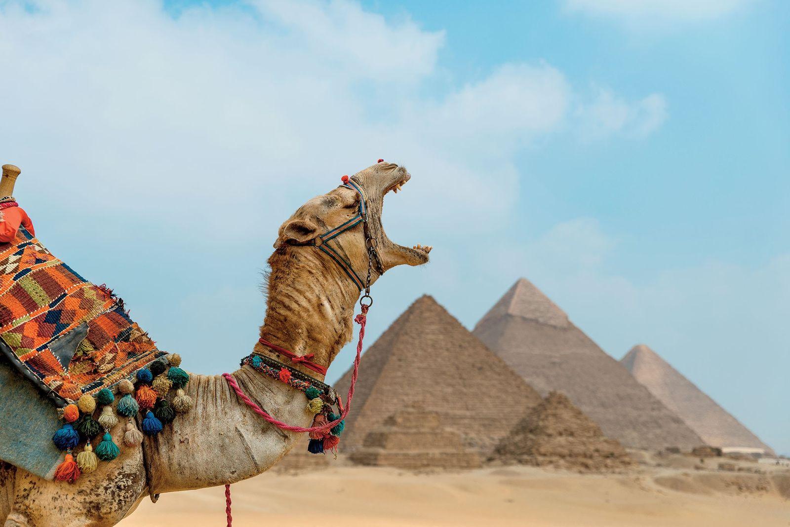 Pourquoi le solstice d'été est la meilleure période pour découvrir les pyramides d'Égypte