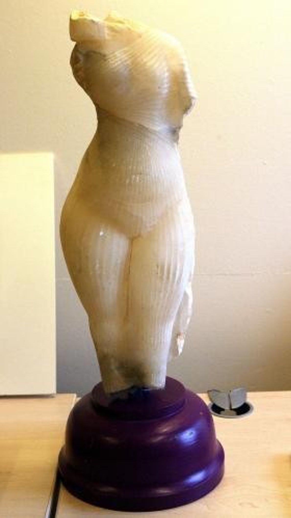 En 2002, les Greenhalgh, une famille de faussaires d'art, ont convaincu le Bolton Museum d'acheter cette ...