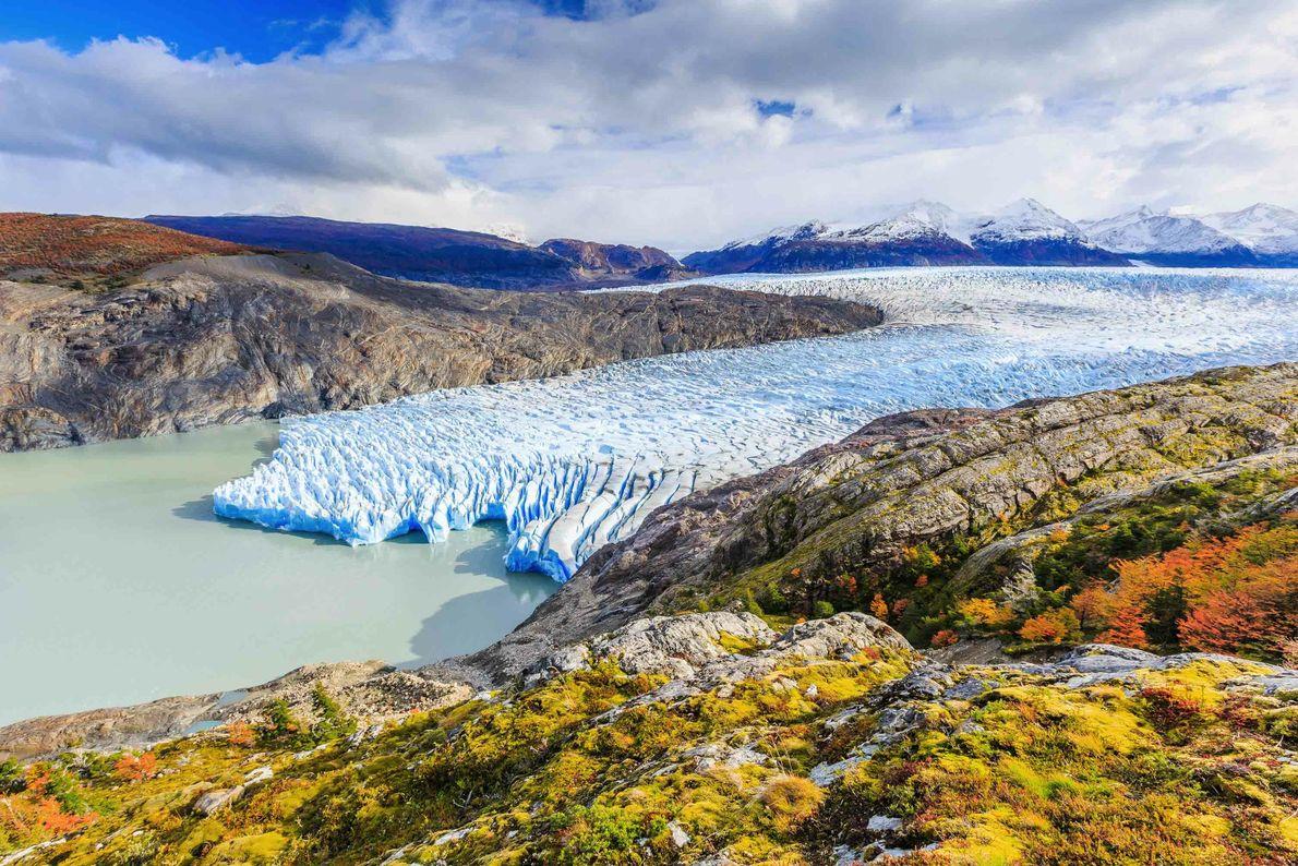 Au sein du parc national Torres del Paine, le glacier Grey est l'une des extrémités du ...