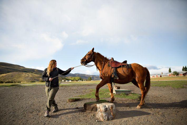 Une guide touristique marche en compagnie d'un cheval nommé Zapata dans le parc national Torres del ...