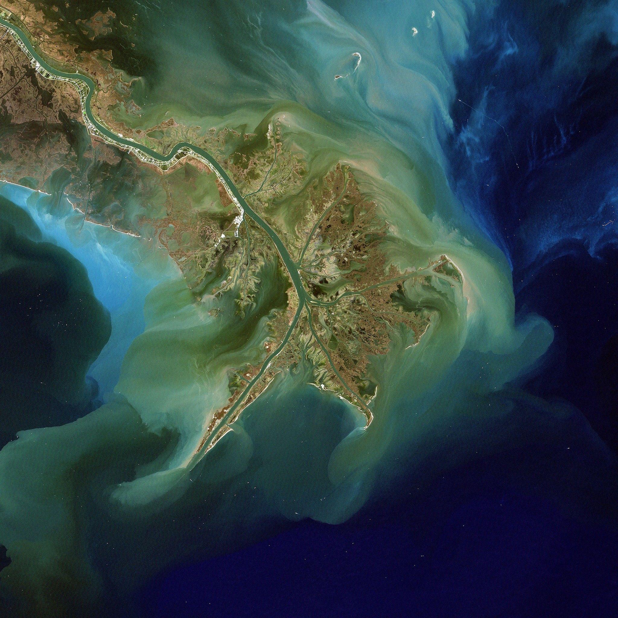 Le ruissellement des engrais crée la plus grande zone morte jamais observée aux États-Unis | National Geographic