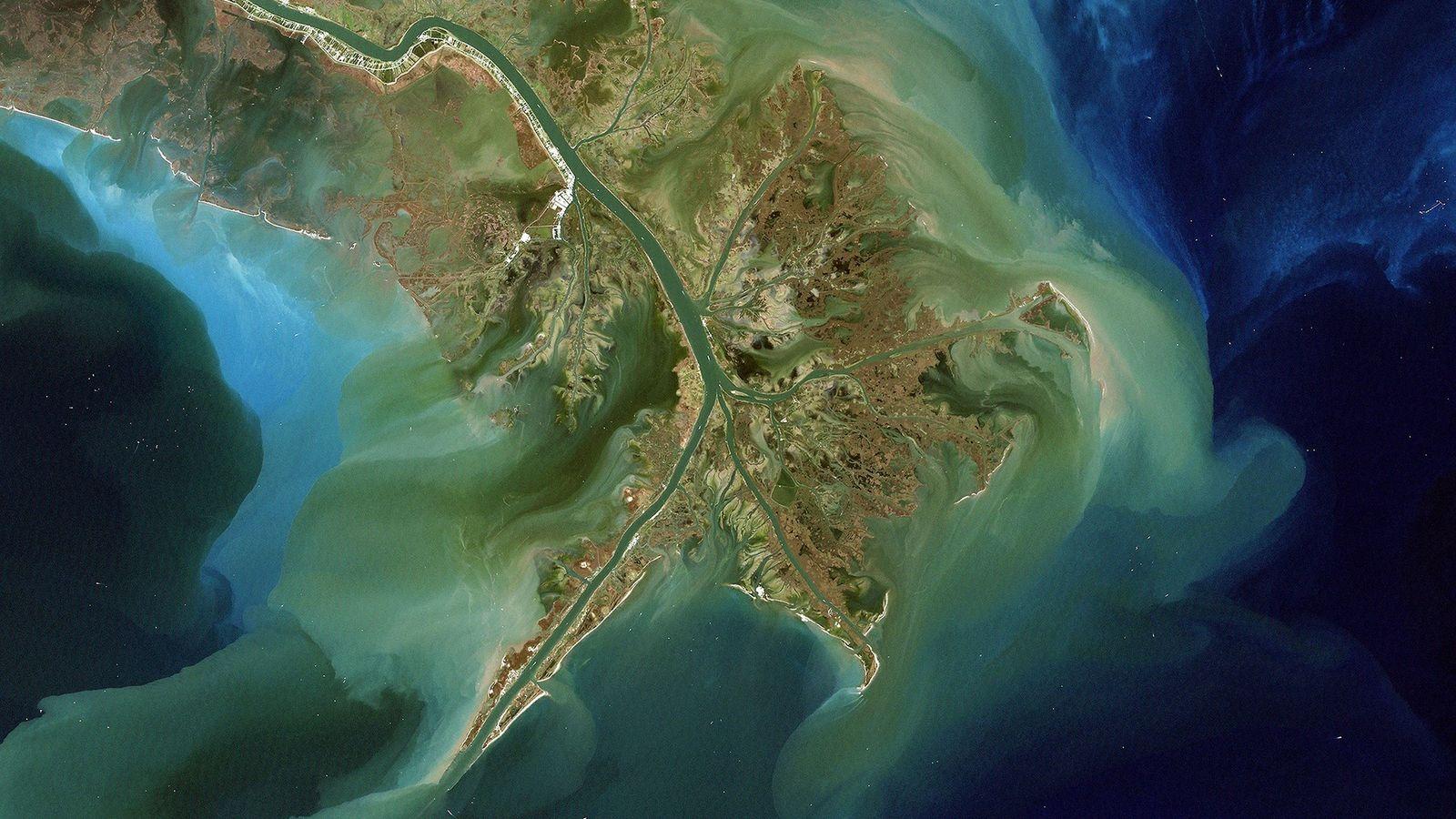 Vu du dessus, on distingue clairement l'impact des sédiments charriés par le fleuve Mississippi jusqu'au Golfe ...