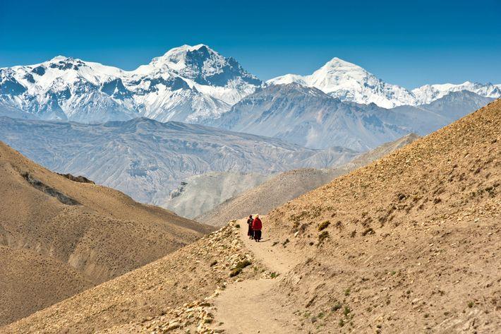 Des moines traversent à pied la région du Mustang au Népal avec les sommets de l'Himalaya ...
