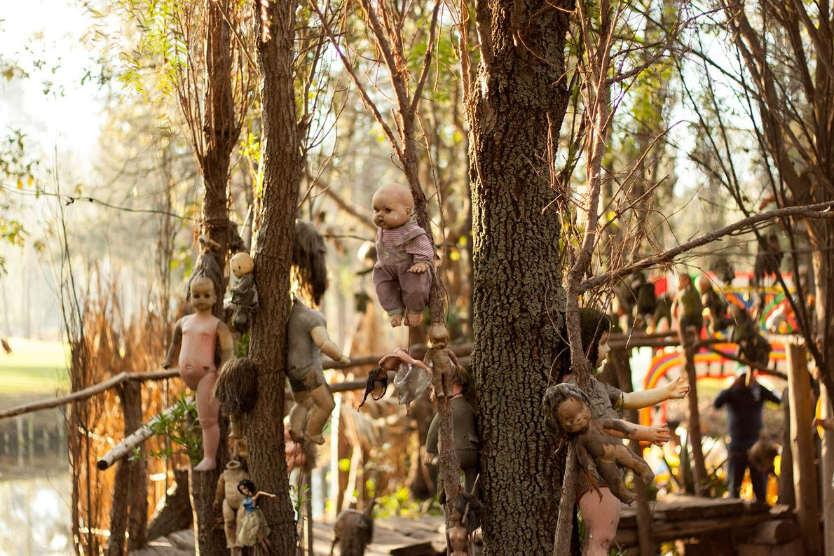 L'île aux poupées, Mexique -Des poupées abandonnées à différents stades de décomposition sont suspendues aux arbres ...