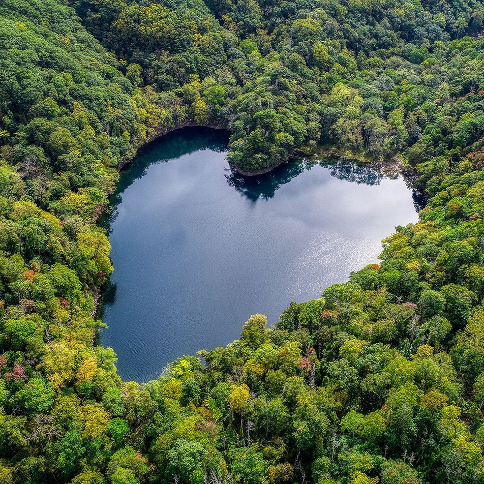 Des cœurs partout : quand la nature rend amoureux