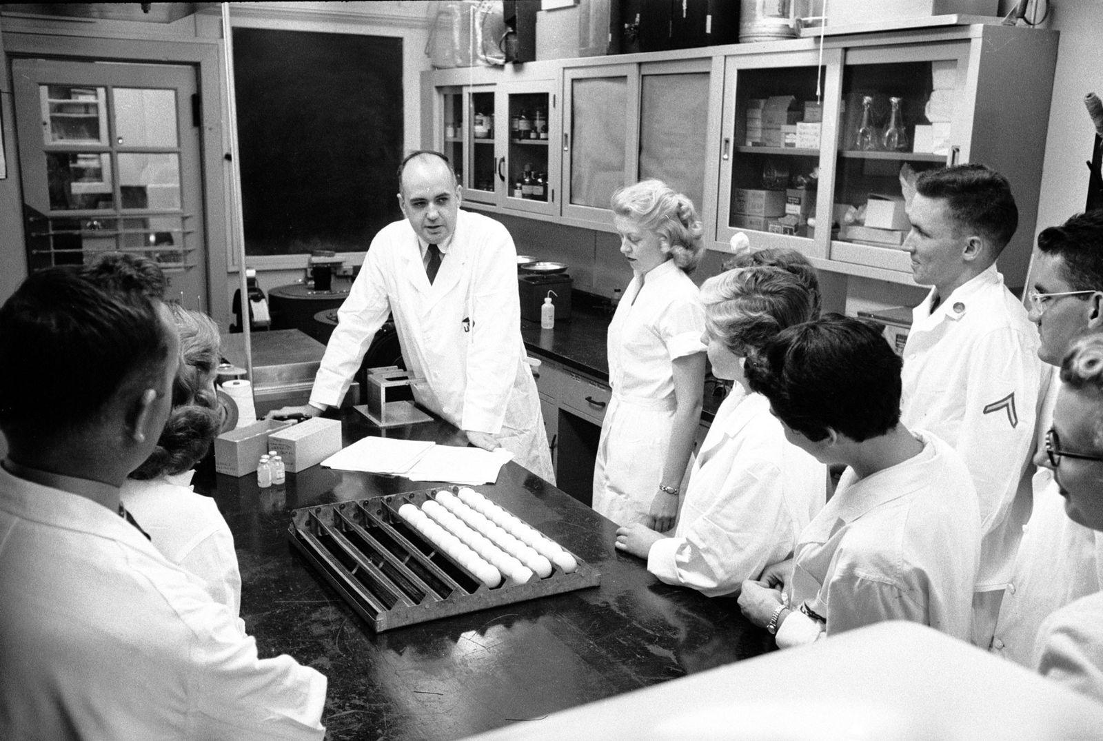 1957 : comment un virologue a empêché la propagation d'une pandémie