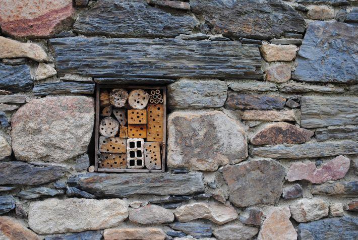 Hôtel à insectes encastré dans un mur. © André Fouquet