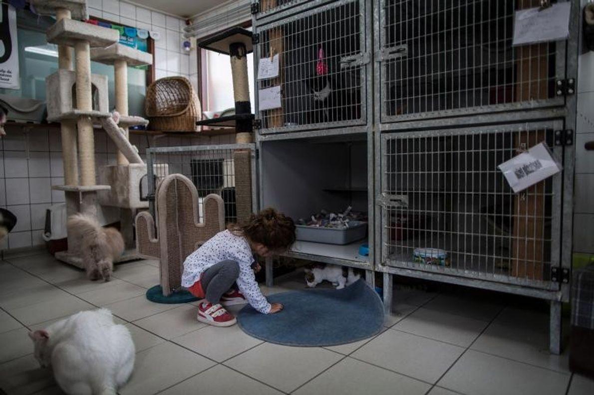Sarah Abu-Hassan, une fillette de 3 ans, visite le Catboat avec sa mère, Stephanie Kane.