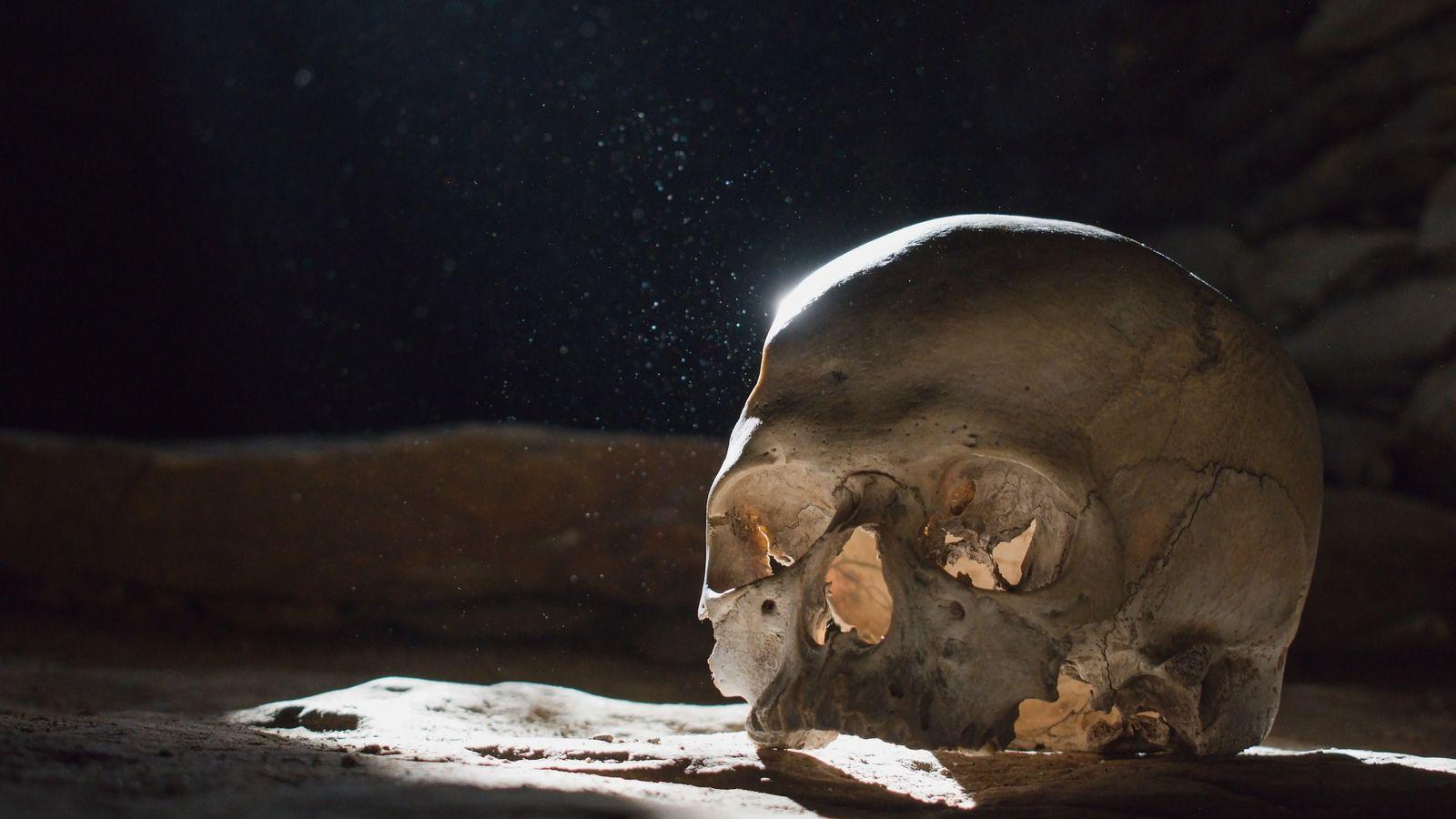 Le prieur Guy était un privilégié : l'analyse de ses ossements montre qu'il a eu une ...