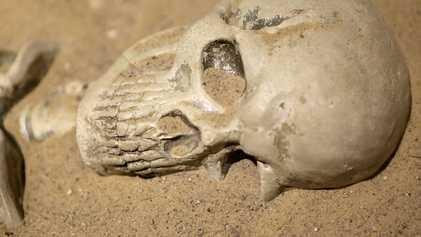 Un squelette datant du Moyen-Âge retrouvé gisant au fond de la Tamise