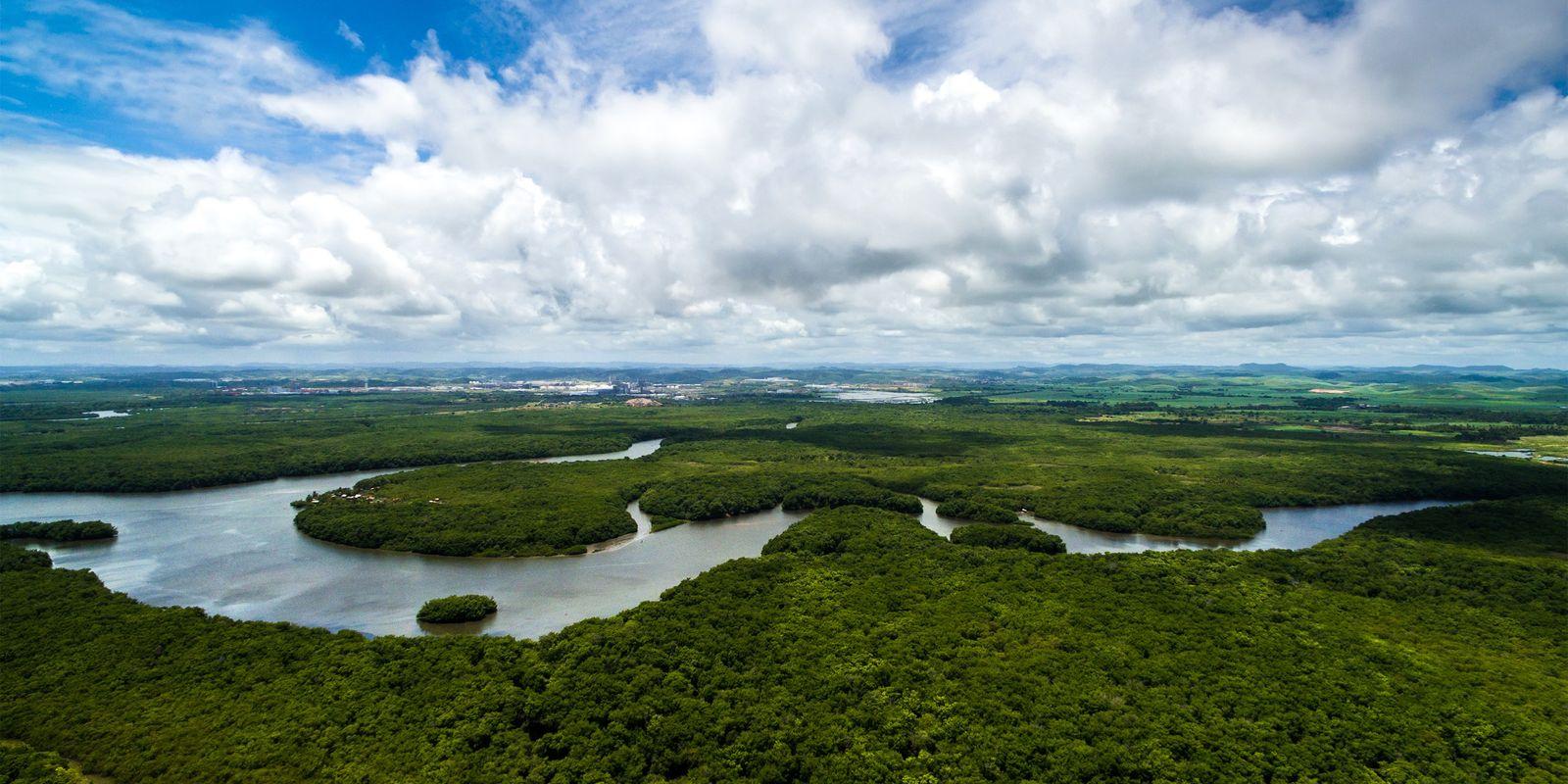 La déforestation de la forêt amazonienne a atteint un pic en 2018