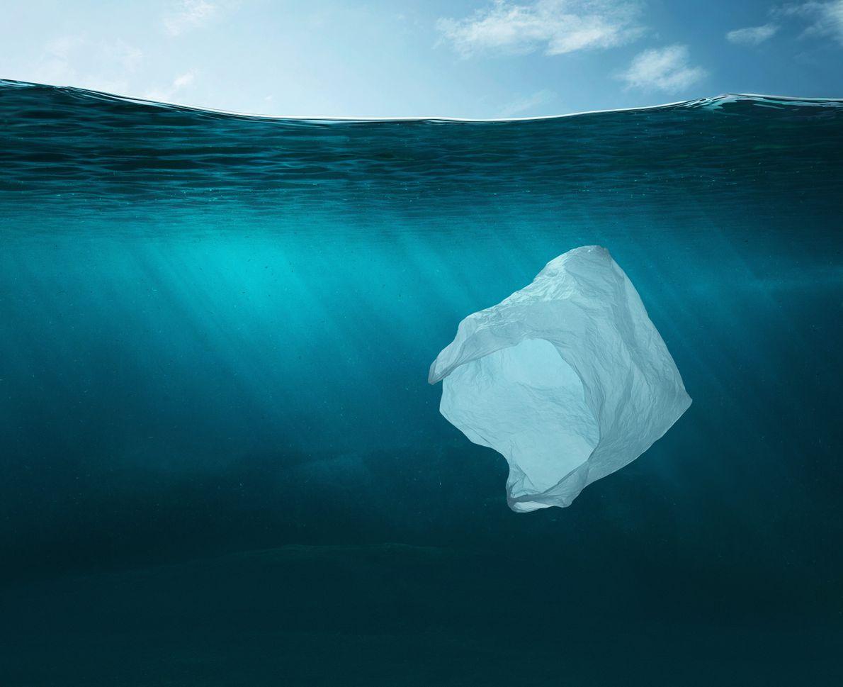 Maroc : l'objectif ''Zéro plastique'' n'est pas encore atteint