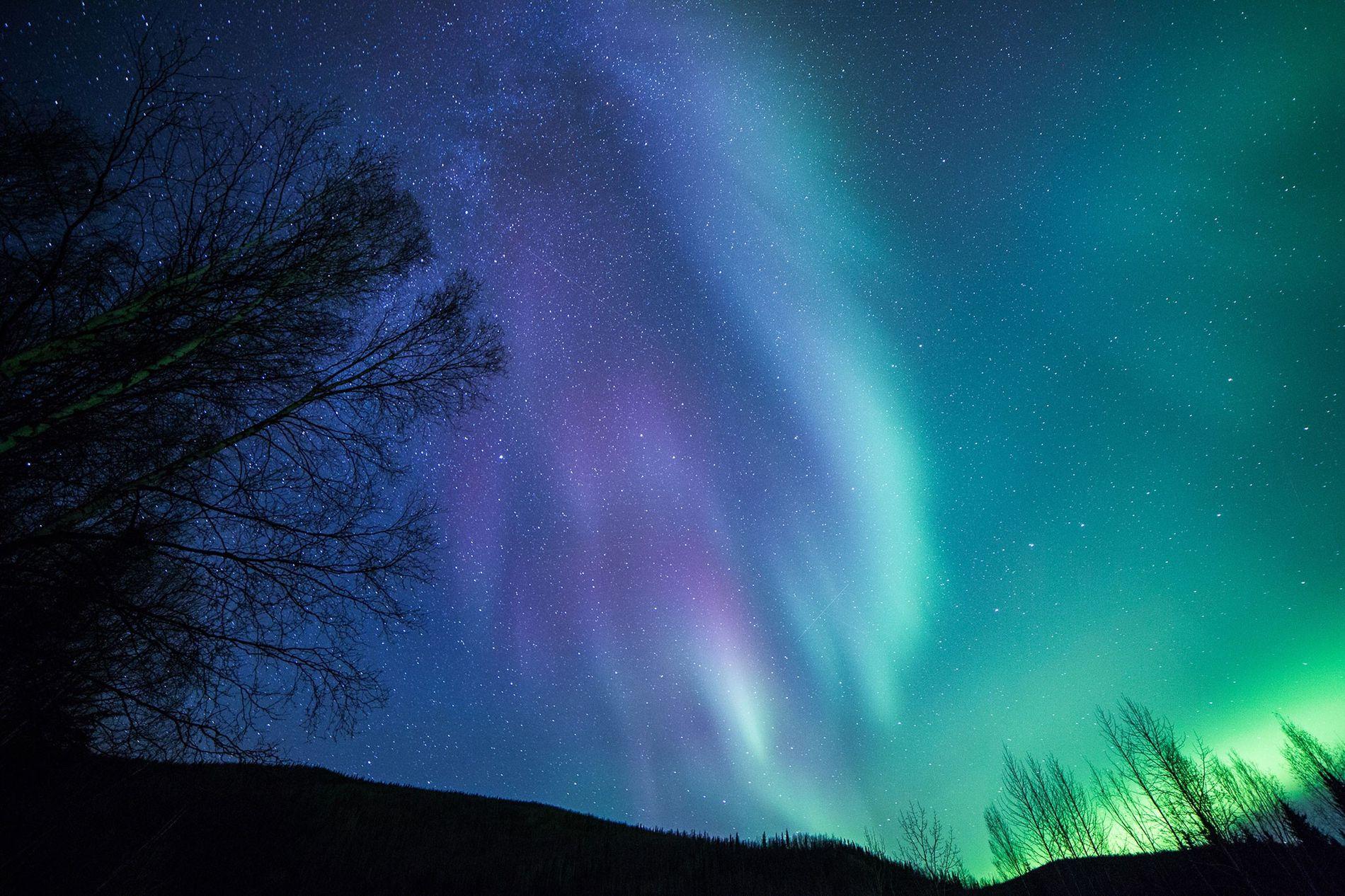 Une aurore boréale illumine le ciel au-dessus de Fairbanks, en Alaska.