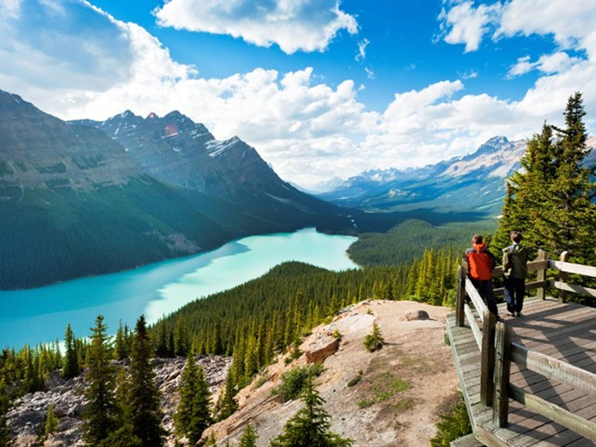 Canada: où les choses sauvages sont