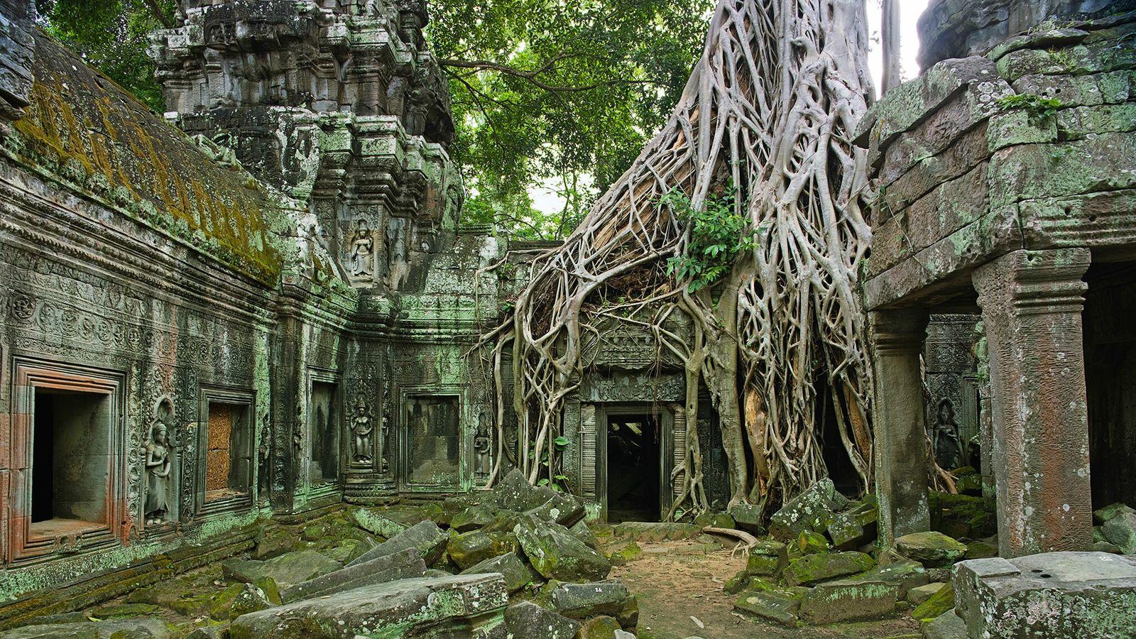 Alors que de nombreux temples cambodgiens affichent fièrement leurs merveilles architecturales, le temple Ta Prohm à ...