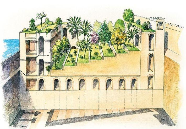 Les anciens récits décrivent les jardins de Babylone comme composés deplusieurs terrasses qui abondent en plantes ...