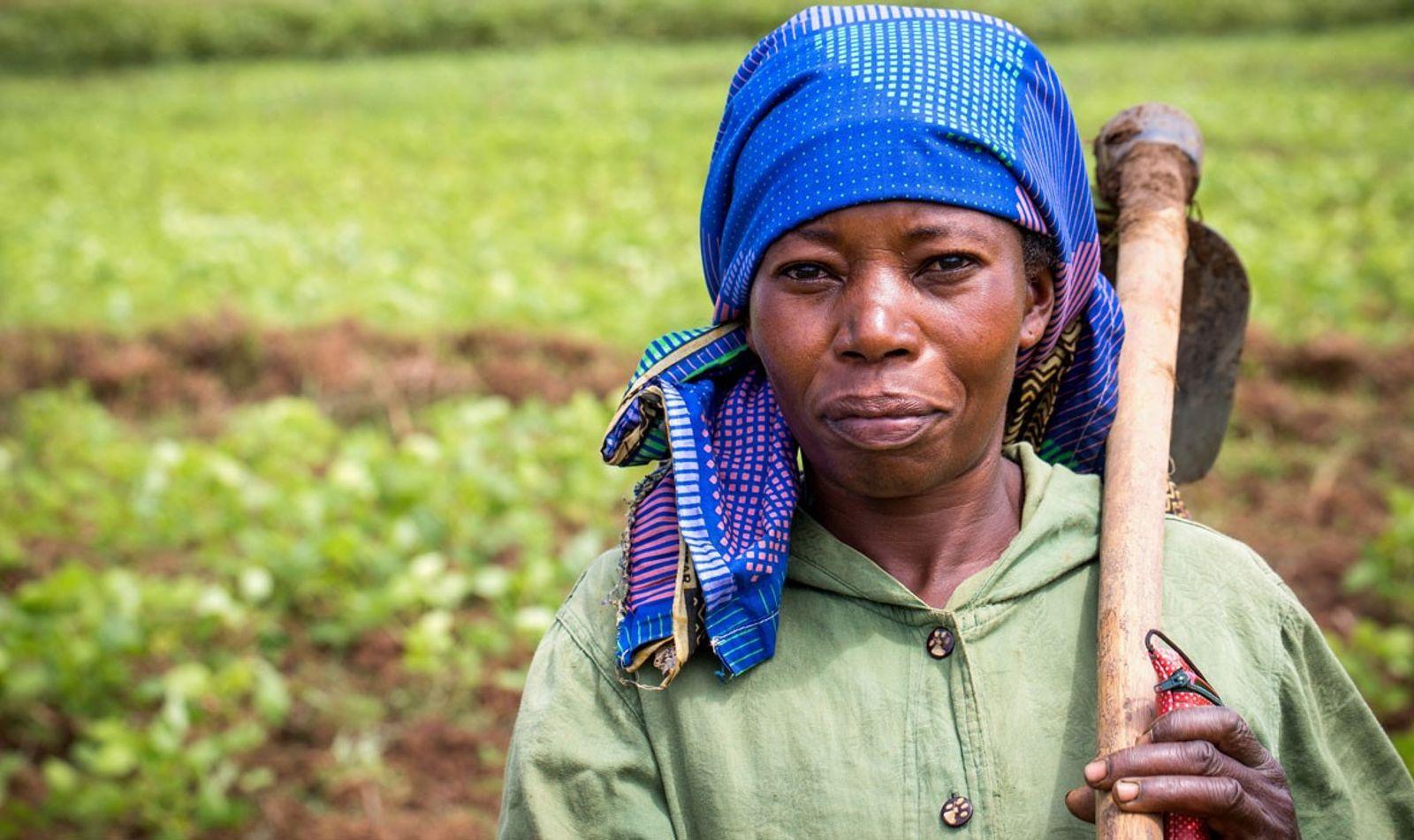 Une agricultrice dans son champ, au Sud-Kivu, en RDC. Cette région a été ravagée par plus ...