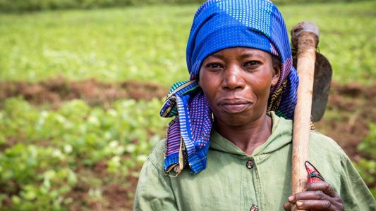 RDC : vers la réhabilitation des agriculteurs et l'autonomisation des femmes