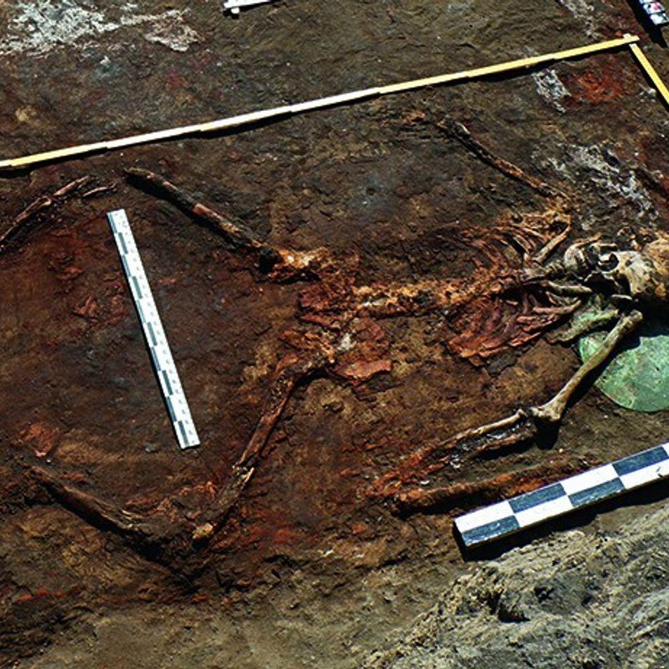 Découverte de tombes au pays des Amazones