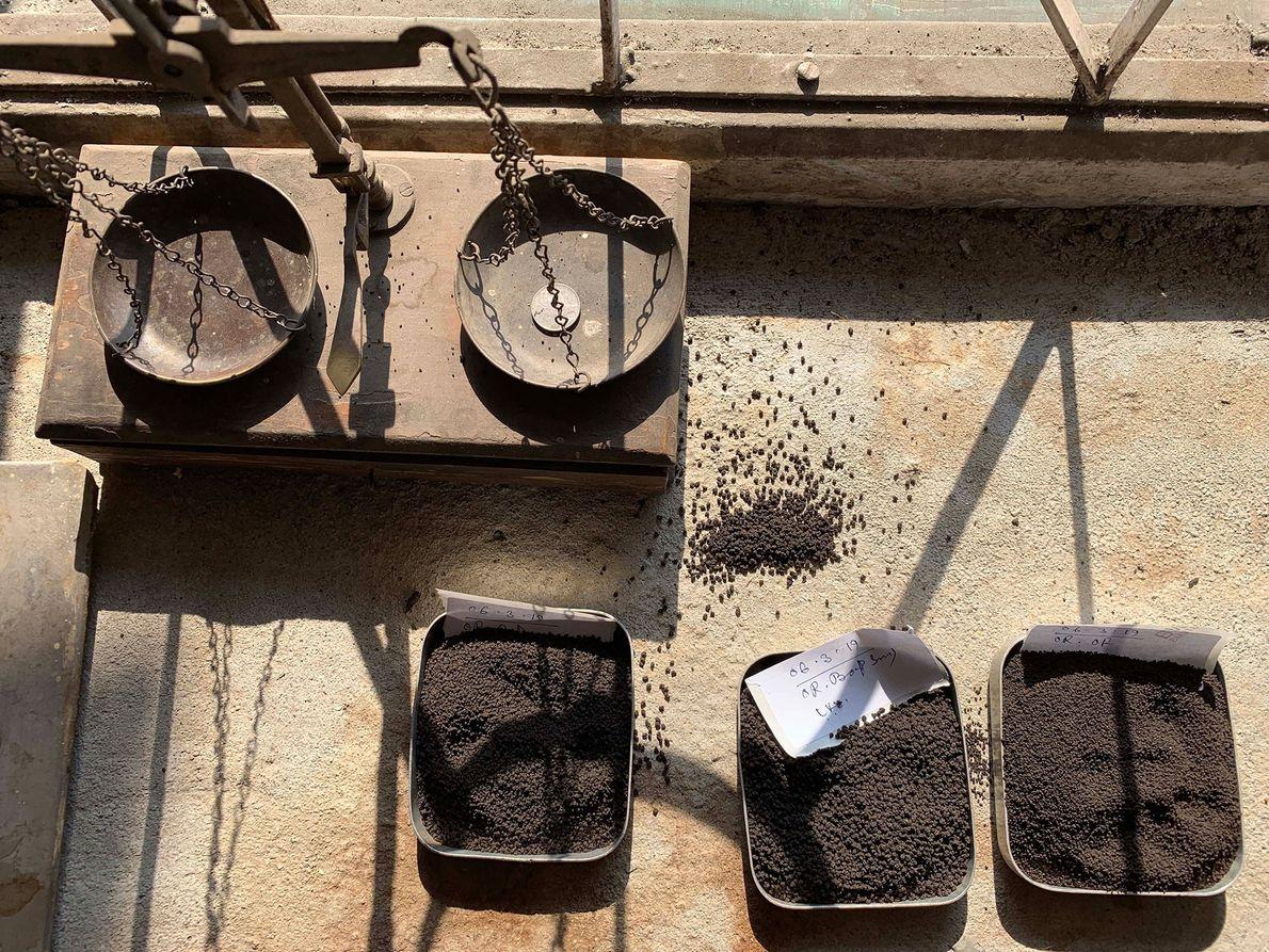 Différents thés attendent d'être pesés et classés dans la plantation Looksun, dans le Bengale occidental.
