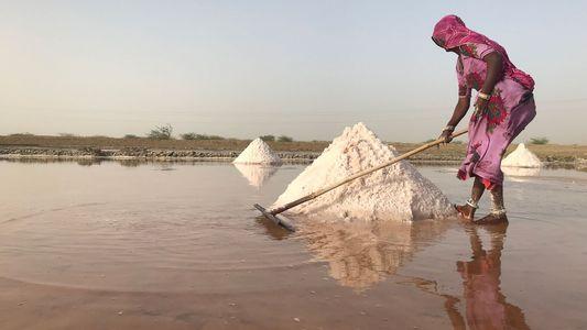 Une crise de l'eau sans précédent menace 600 millions de personnes en Inde
