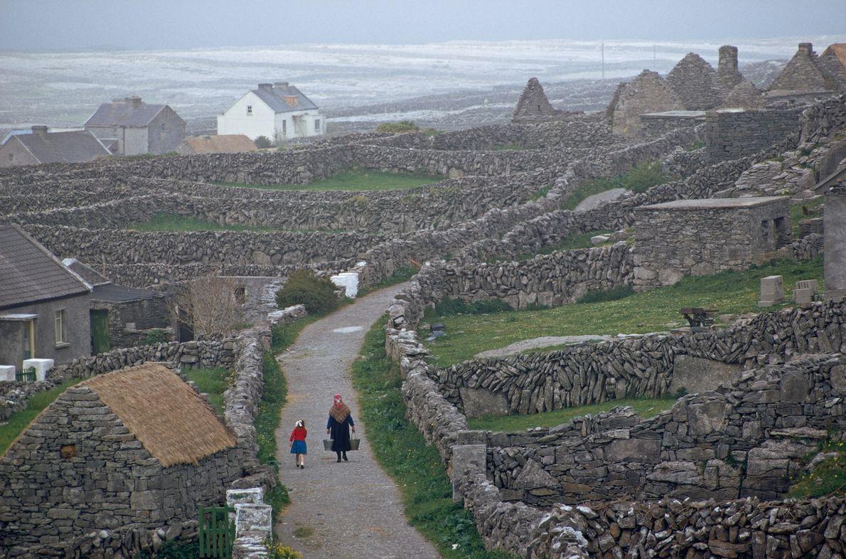 Labyrinthe irlandais