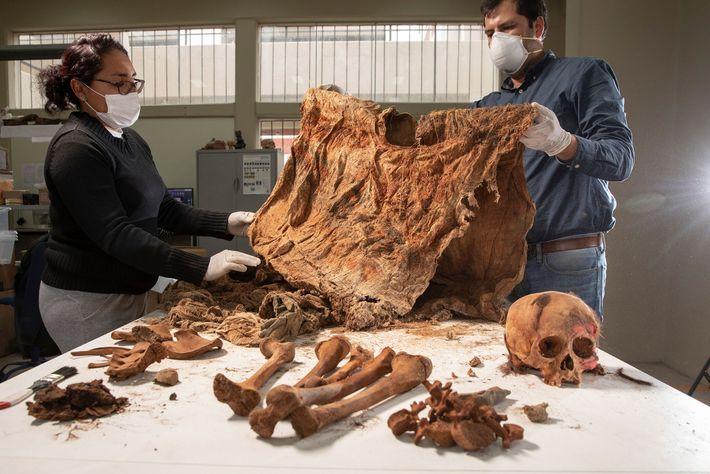 Les archéologues ont au jour un site de sacrifice d'enfants à Pampa La Cruz, au Pérou. ...