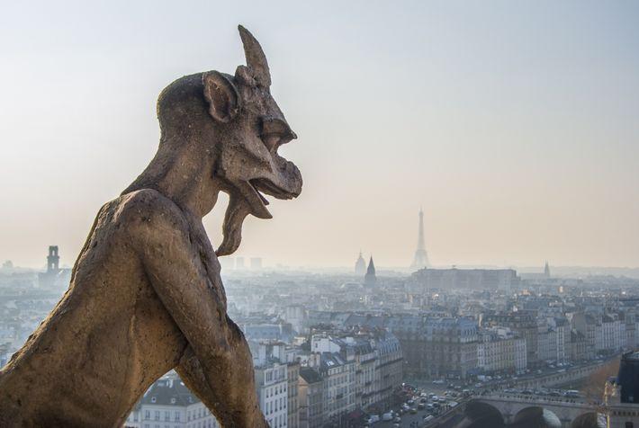 Une gargouille observe Paris depuis le sommet de la cathédrale.