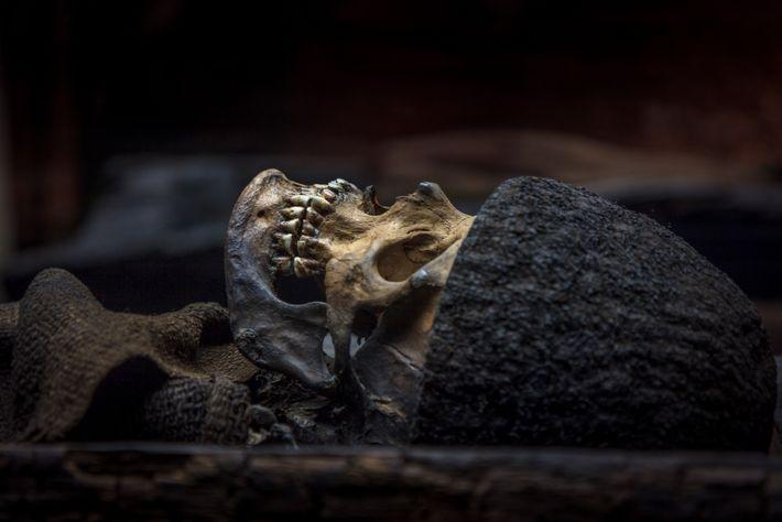 La guerrière de Birka, la grande guerrière viking oubliée par l'Histoire