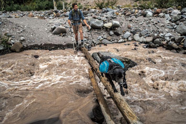Jason Greene et sa chienne traversent la rivière Sandy, dans la Mount Hood Wilderness area (aire naturelle du mont Hood), ...