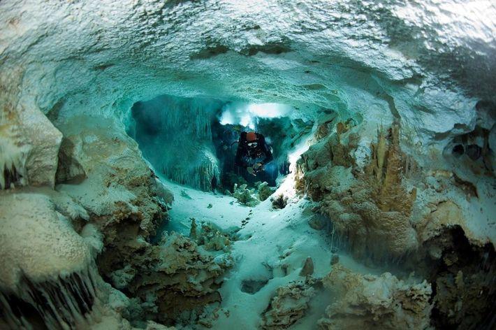 """Mark Laukien se fraie un chemin dans le passage des """"Badlands"""" de Dan's Cave, à Abaco, ..."""