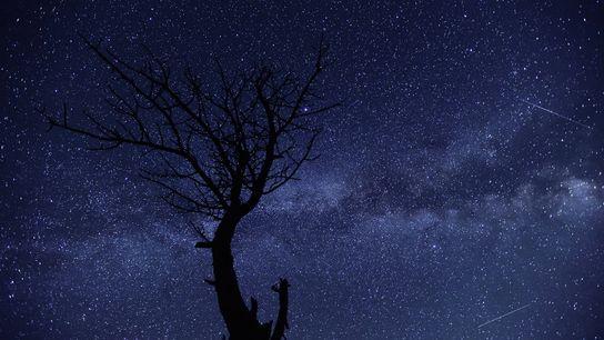 july-sky-guide-meteor-shower