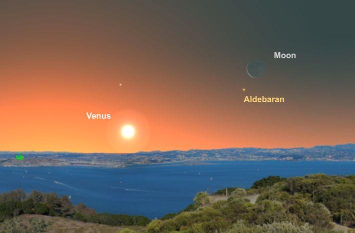 Le croissant de Lune aidera les observateurs à localiser Aldébaran juste avant l'aube le 30 juin.