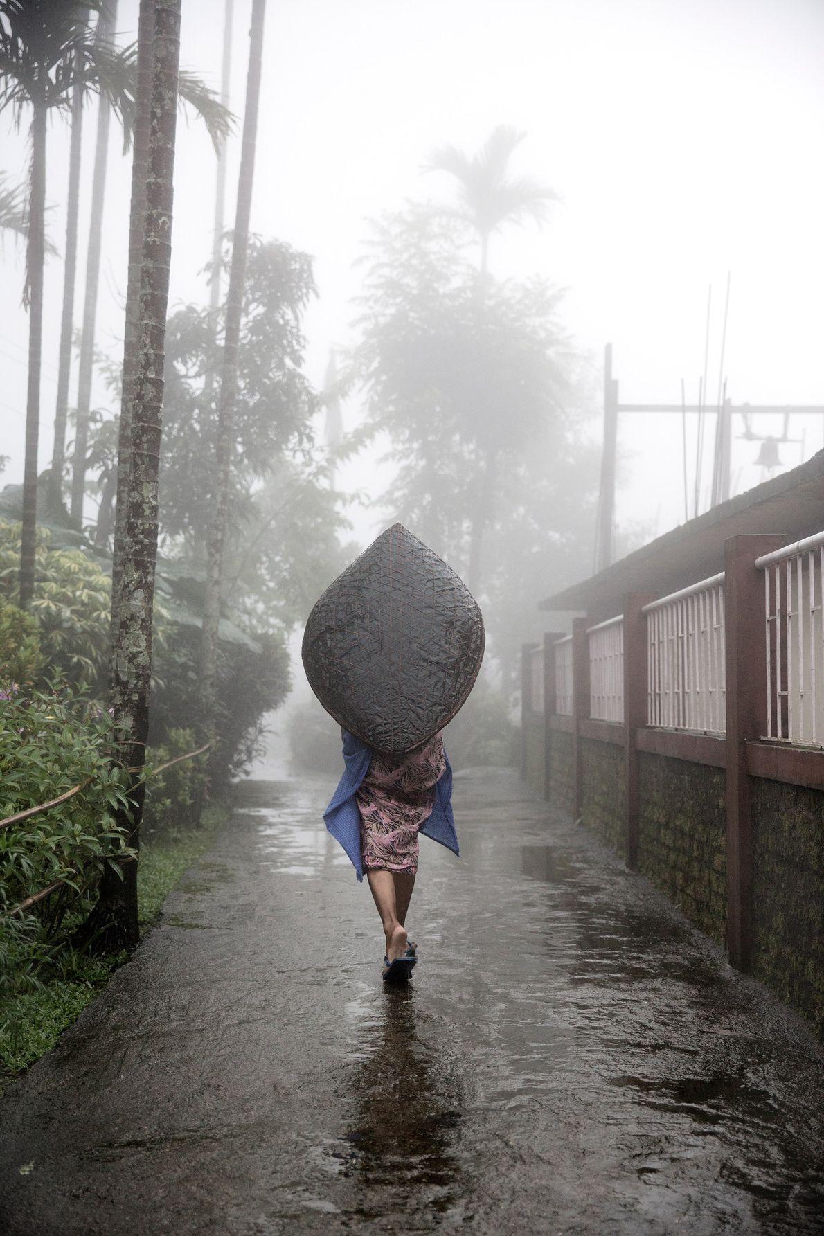 Pour se protéger des fortes pluies, une femme s'abrite sous un parapluie Khasi traditionnel.