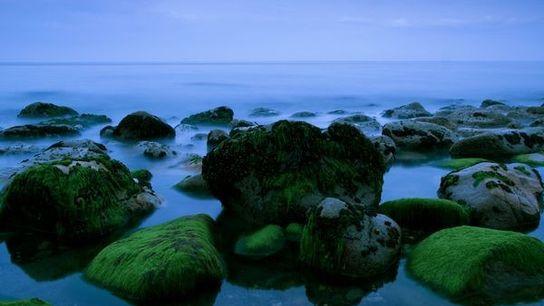 La plage de Killiney