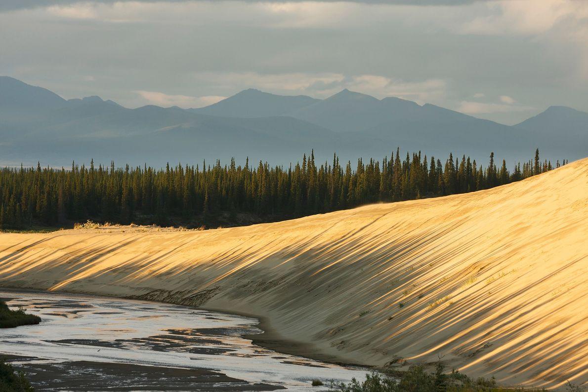 Situé dans la région arctique du nord-ouest de l'Alaska, le parc national de Kobuk Valley enjambe le couloir ...