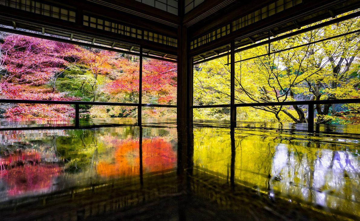 Un jardin au bord de l'eau fait rayonner ses couleurs automnales à travers l'ouverture d'une pagode ...