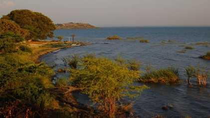 L'assèchement du lac Victoria menace la bonne santé du Nil