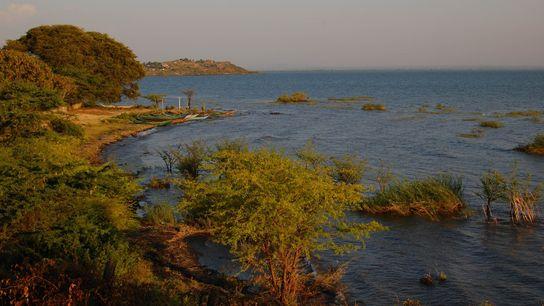 Le lac Victoria s'étend sur trois pays : le Kenya, l'Ouganda et la Tanzanie.