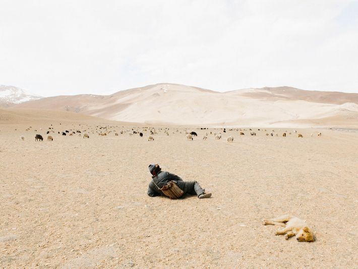 Après des heures à rouler en solitaire, le photographe Yuri Andries s'est immédiatement arrêté lorsqu'il a ...