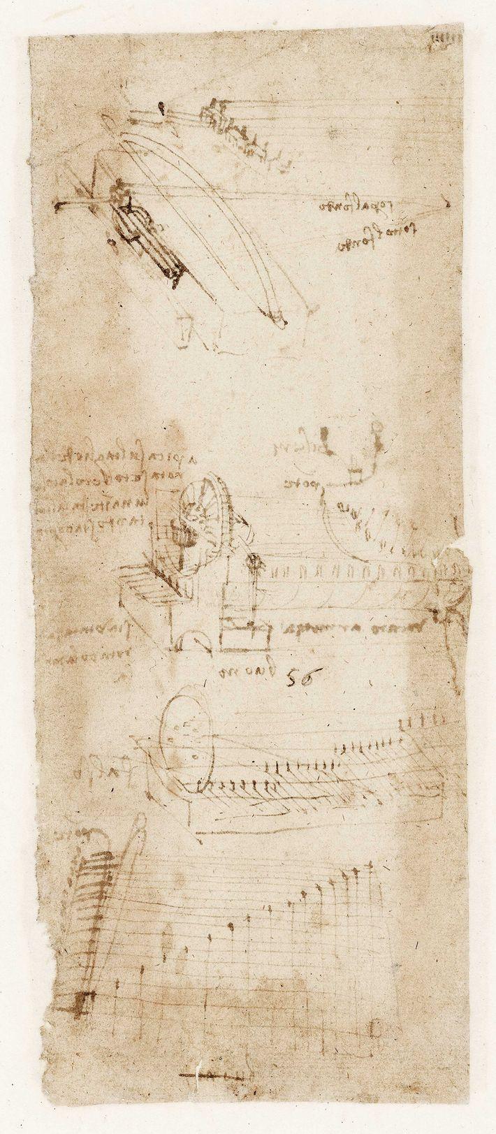 Léonard étudie l'acoustique, chante et improvise des mélodies sur sa lyre à bras (un instrument à ...