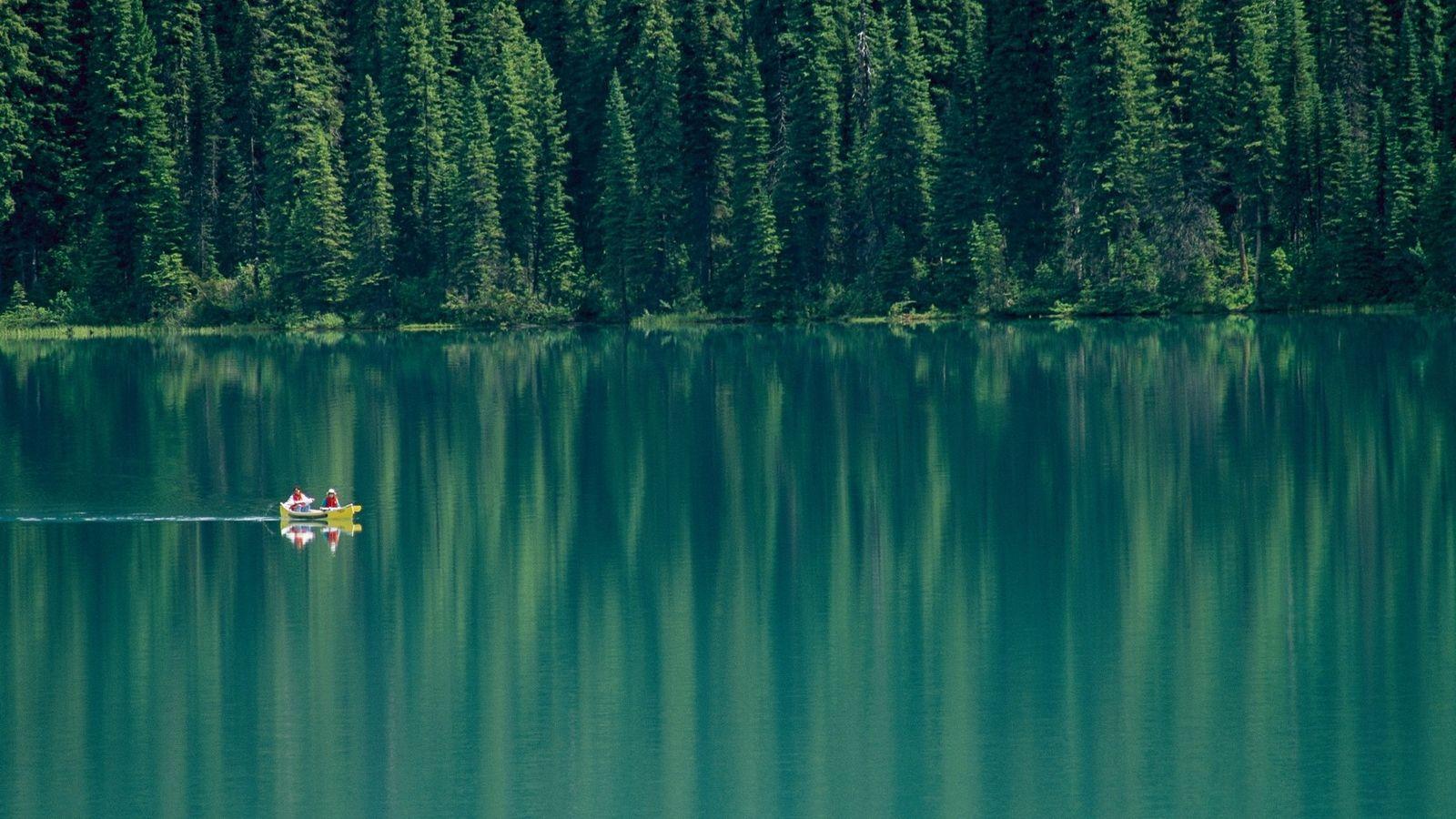 Les parcs nationaux moins visités, comme le Parc national Yoho, en Colombie-Britannique, offrent d'incroyables occasions d'observer ...