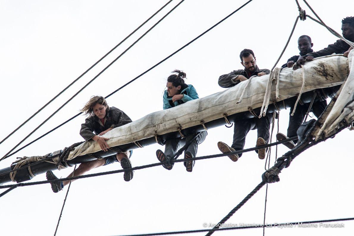 Les gabiers passent le plus clair de leur temps à plus de 20 mètres de hauteur, ...