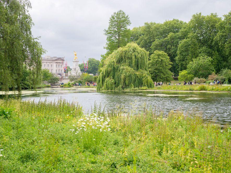 St. James's Park, le plus vieux des huits parcs royaux de Londres, offre un superbe panorama.
