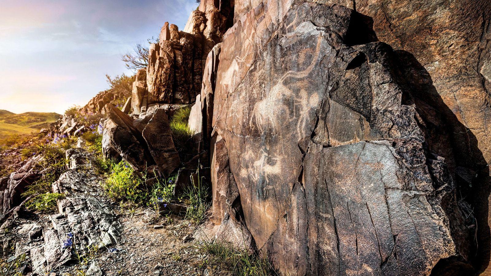 Les longues cornes d'un animal dominent un pétroglyphe datant de l'âge du bronze à Tamgaly.Les traits ...