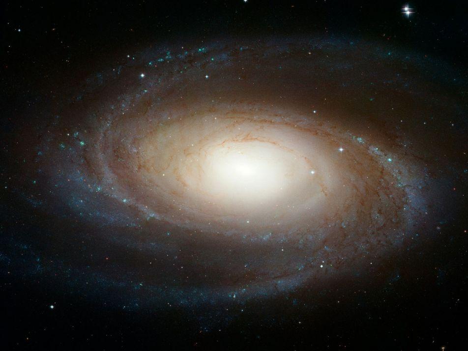 Un mystérieux sursaut radio rapide a été détecté près de notre galaxie