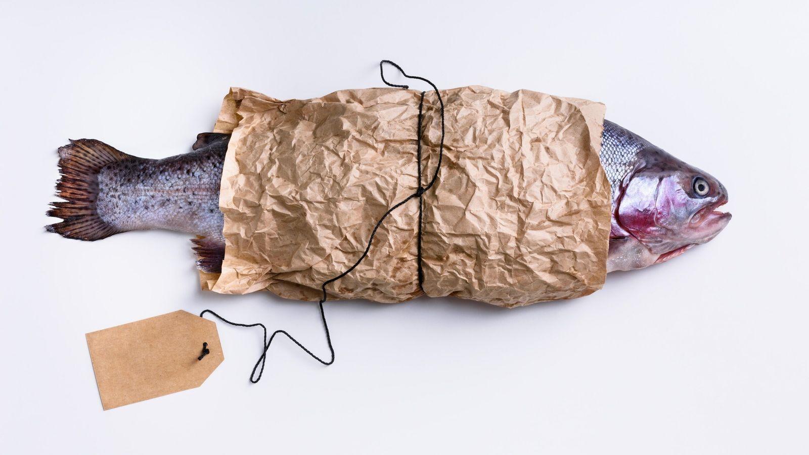 salmon wrapped