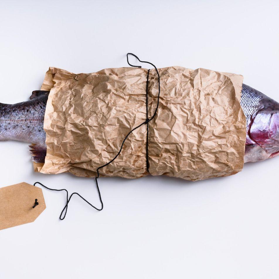 Comment savoir si le saumon que vous achetez est vraiment issu de la pêche durable ?