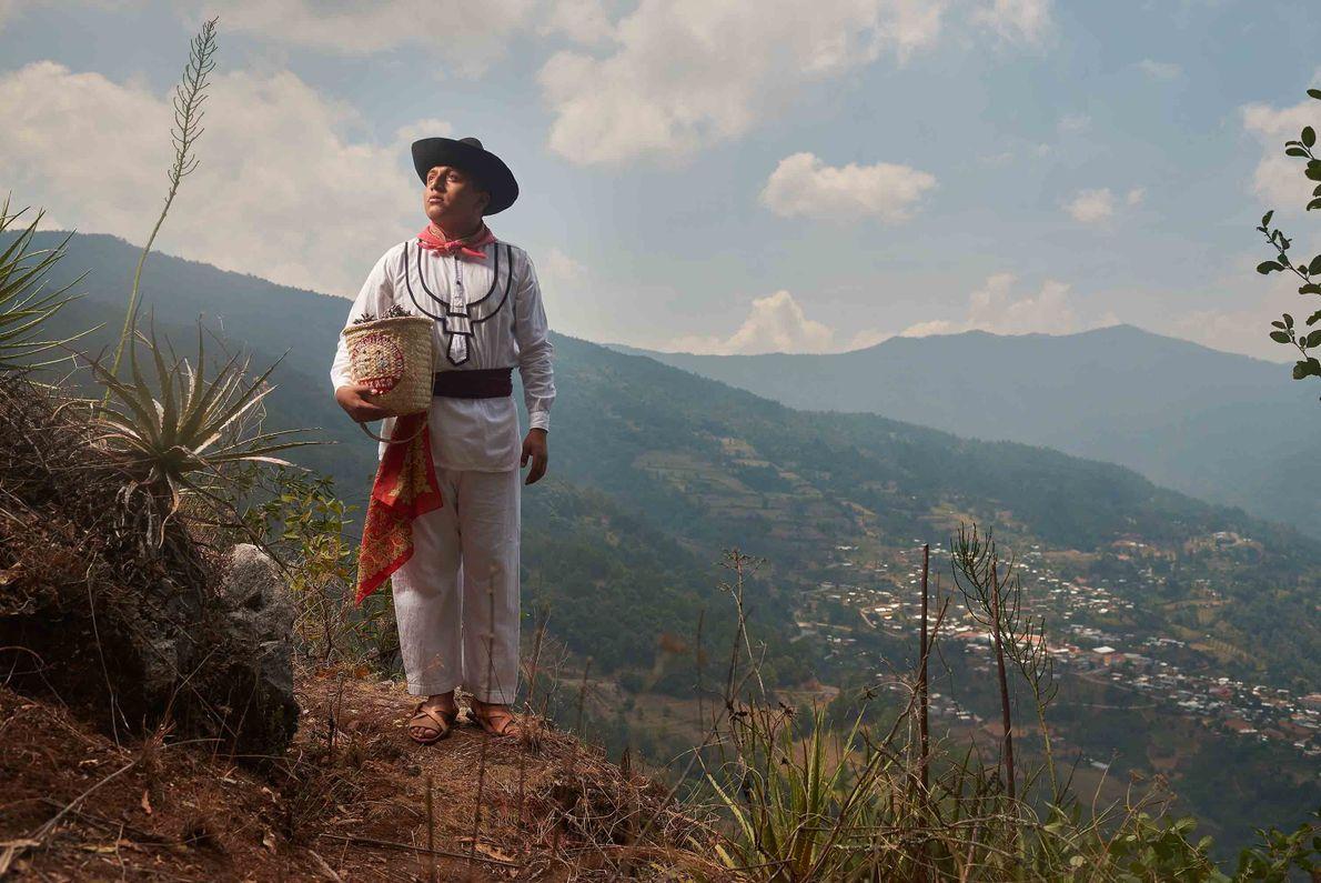 Un jeune homme vêtu d'une tenue de travail traditionnelle récolte des graines au sommet de la ...